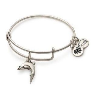 Alex and Ani Dolphin Bracelet